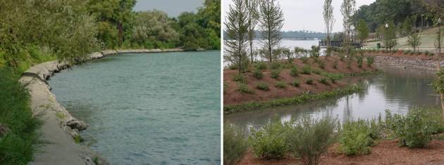 Hartig Elizabeth Park (Detroit)before-After