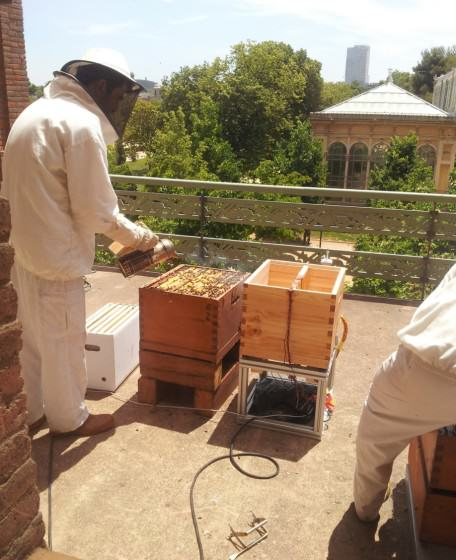 Setting up the big tech beehive. Photo: OpenSystems
