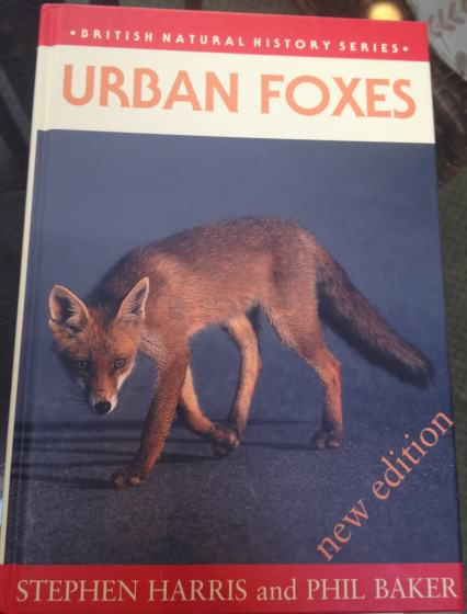 18 Urban Foxes cover