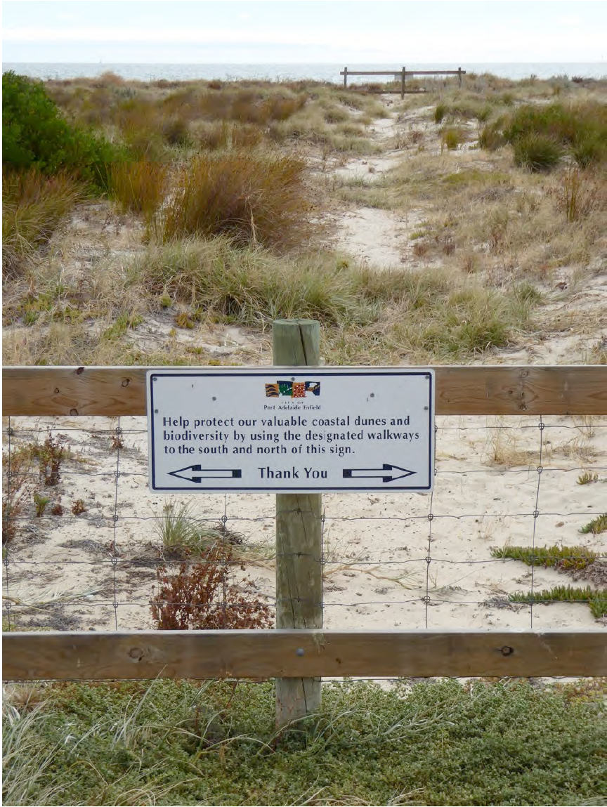 Non-human species do sometimes get consideration in urban planning and management; in this case the City of Port Adelaide Enfield seeks help in trying to protect coastal biodiversity.