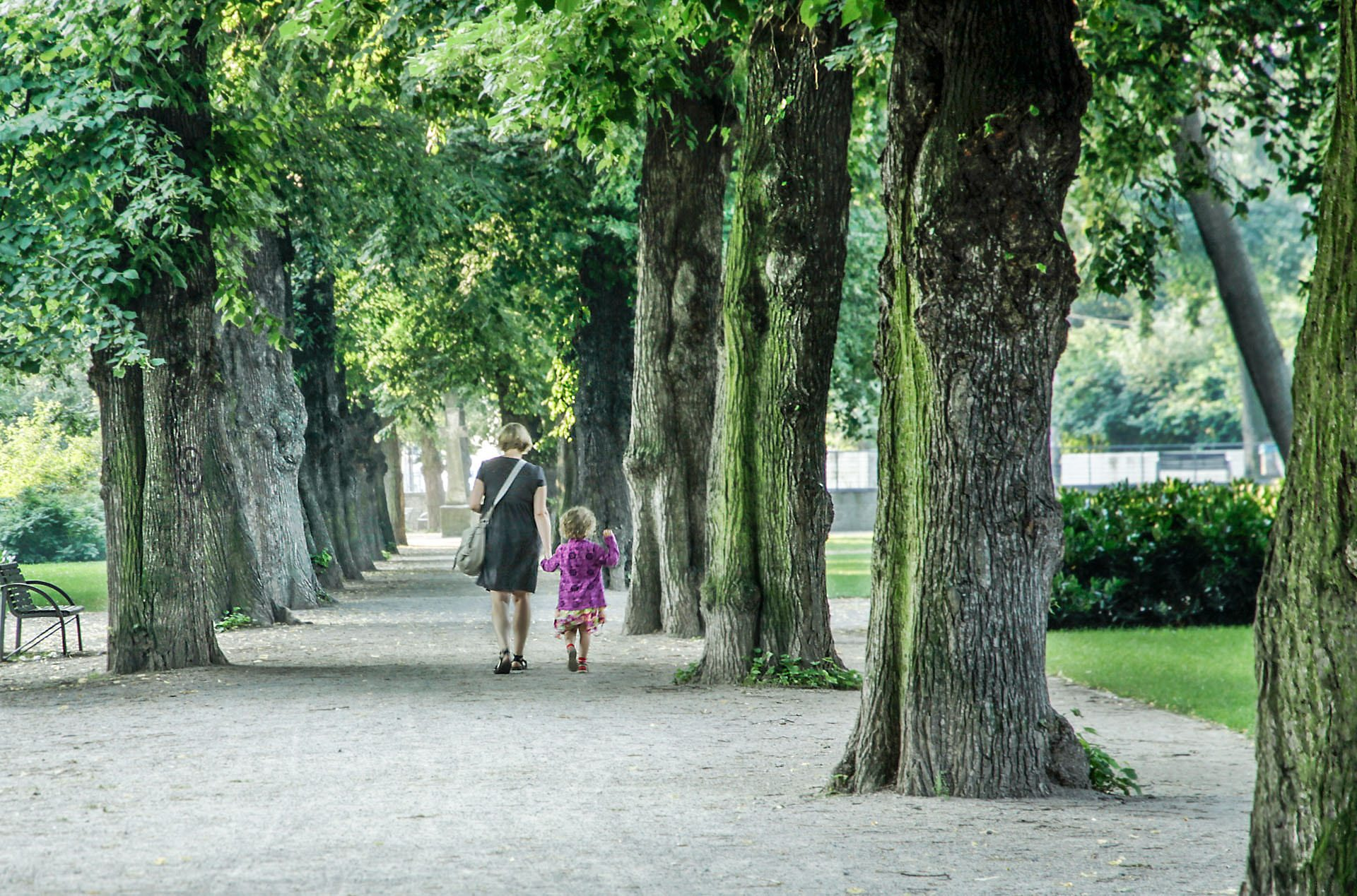 Erfurt inhabitants enjoy today the greenspace investments of the past. Photo (copyright) Monika Lawrence