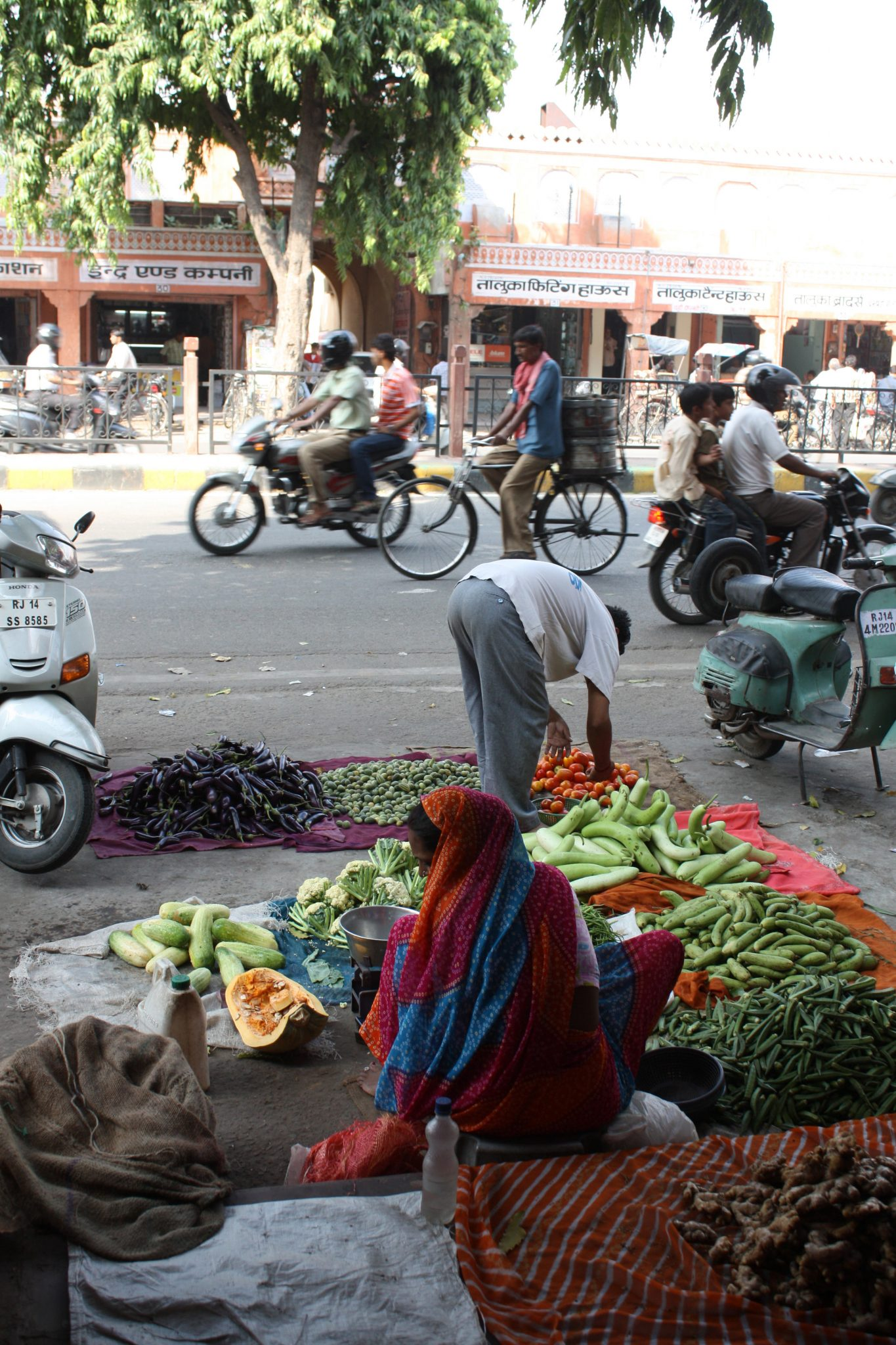 Vegetable sellers on a Jaipur street. Photo (copyright): David Maddox