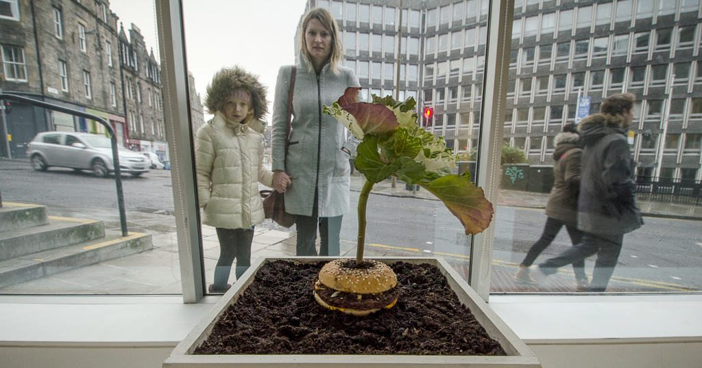 A living sculpture, What is Food was created with the help of Vero Alanis and installed in TENT Gallery in Edinburgh, Scotland. Credit: Patrick M Lydon and Vero Alanis