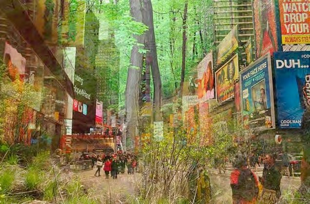 Marielle Anzelone's planned pop-up forest in Times Square, New York City. https://www.kickstarter.com/projects/popupforest/build-a-popup-forest-in-times-square-nyc
