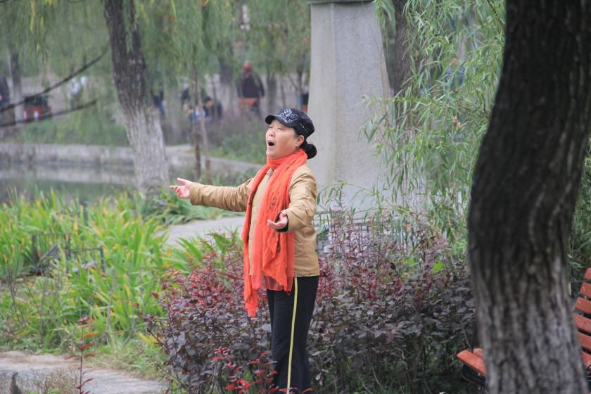 "Xing Qing Gong Park in Xi'an City (built in 1958) can truly be called a ""people's"" park"