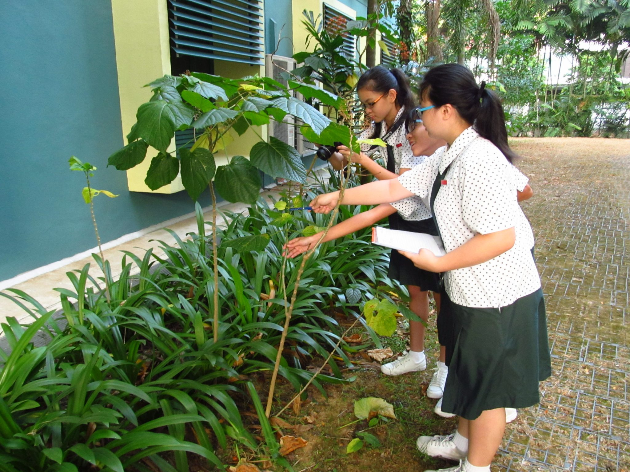 community in nature reconnecting singapore s urbanites 6501 st margaret s secondary school
