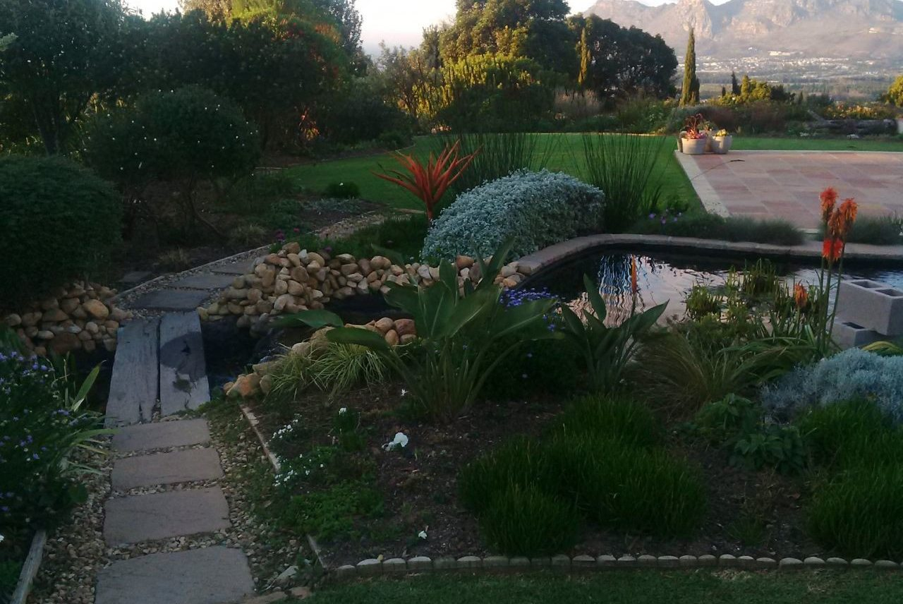 How Does Your Garden Grow? Stories from South African Gardeners ...