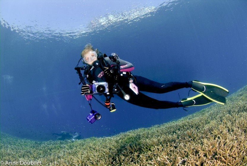 Papua New Guinea: ALD with cameras underwater on reef.