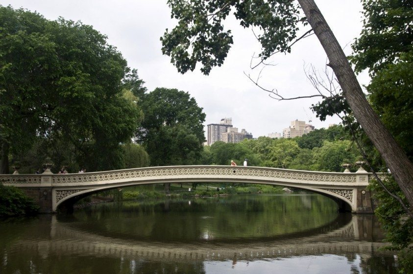 24_Central Park_BC_2013