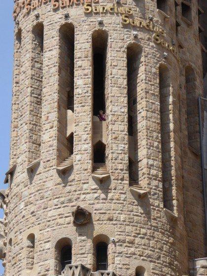 04 Peregrine Falcons have found sanctuary in Gaudi's Sagradia Familia in Barcelon