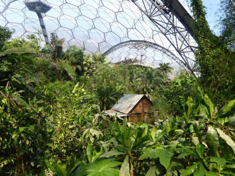 14 Eden Project domes