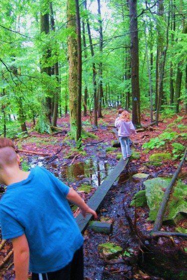 Children_Exploring_Nature