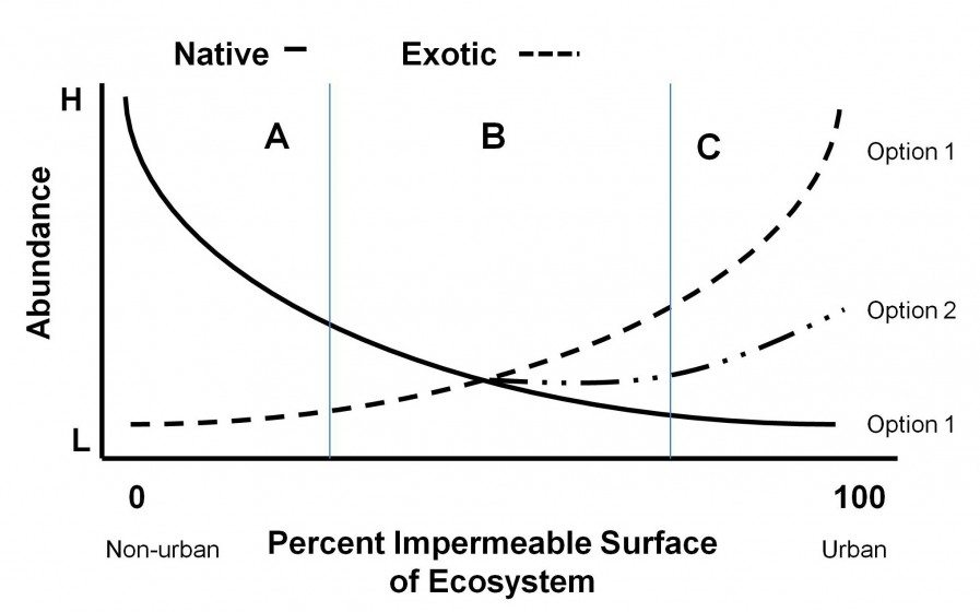 A continuum of nativism showing the relationship between percent impermeable surface of an ecosystem and the abundance of native and exotic species. The value of native and exotic species will vary along the continuum, as will the feasibility and cost of maintaining native species. Option 1 illustrates the abundance of native and exotic species as ecosystems become highly urbanized. Option 2 illustrates an alternative outcome if planning, design, management and restoration activities are implemented to maintain native species in urbanizing ecosystems.