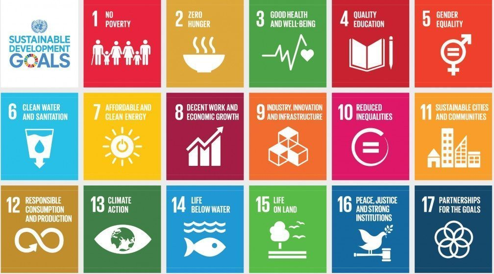 See https://sustainabledevelopment.un.org/topics for an interactive website of all 17 goals.