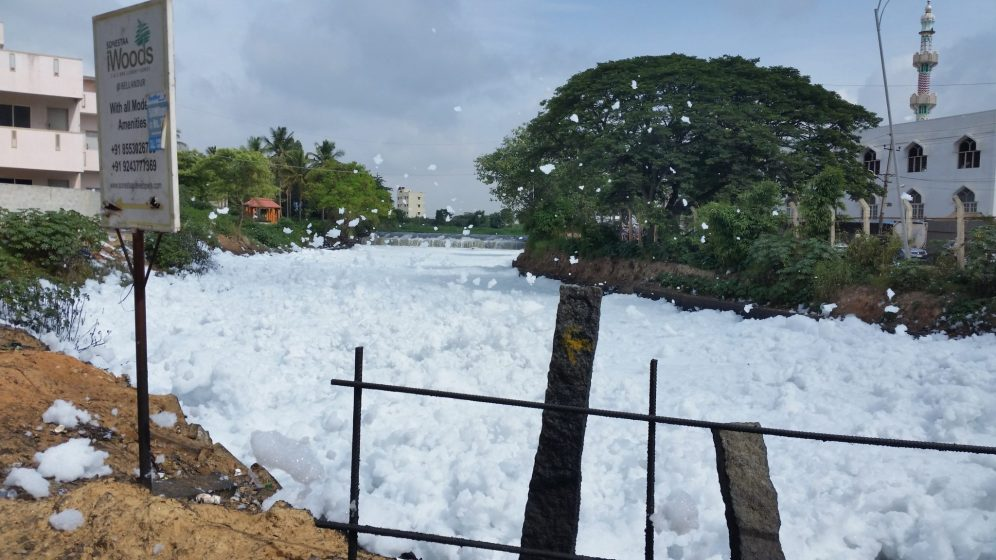 1. An advertisement for a 'woodsy' apartment near Bellandur lake, frothing with foam