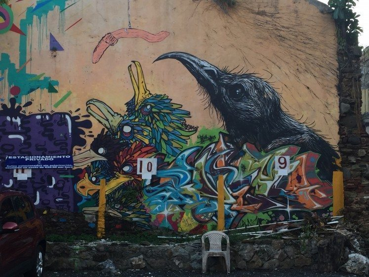 Fishing for birds in a Panama City, Panama parking lot. Photo: David Maddox