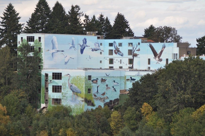 North America's largest mural at 55,000 square feet,overlooking Oaks Bottom Preserve in Portland, Oregon. Commissioned and photographed by Mike Houck.