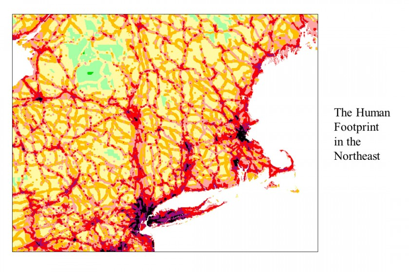 human footprint in northeast