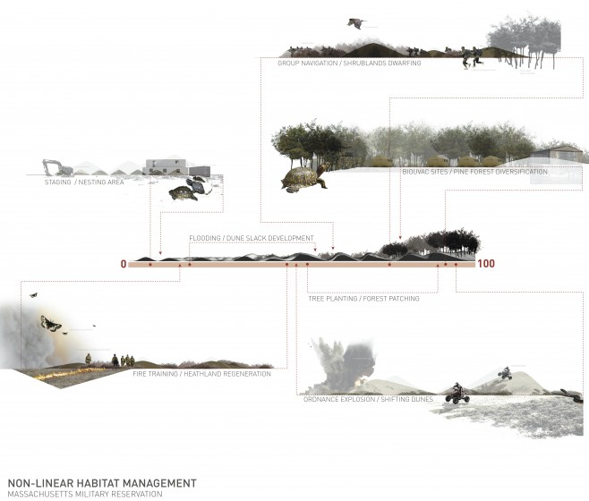 Non-linear habitat management: Dynamic uses proposed for Massachusetts Military Reservation at various stages of ecological succession. Images: Geneva Wirth, 2008.
