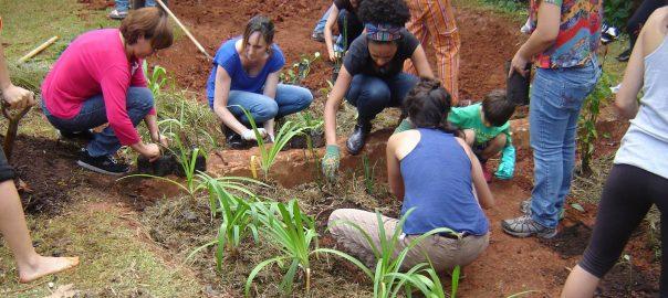 Fig5-planting rain garden-12-3-2016-Castagna
