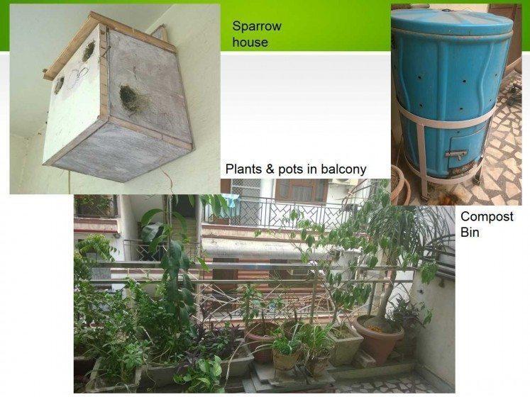 Sparrow balconies_Marisha Sharma-1