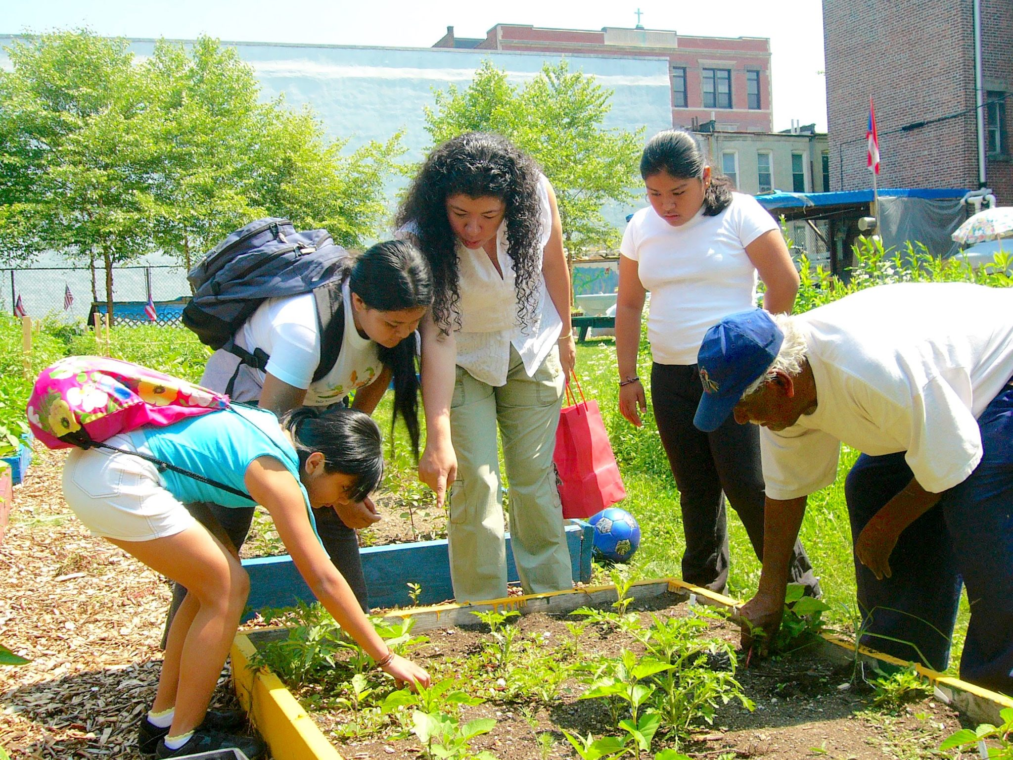 urban environmental education review the nature of cities intergenerational urban environmental education