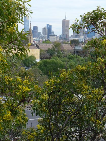 Melb CBD from Studley Park by Nicole Middleton
