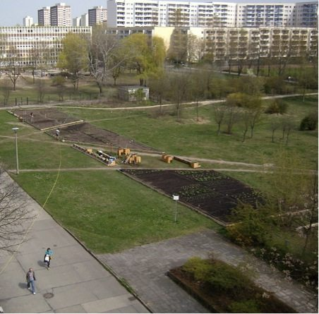 Urban Community Gardens As Contested Space Essay - image 7