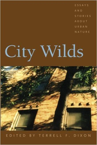 city wilds cover