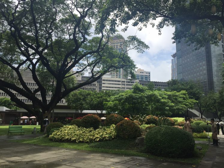 ayala-triangle