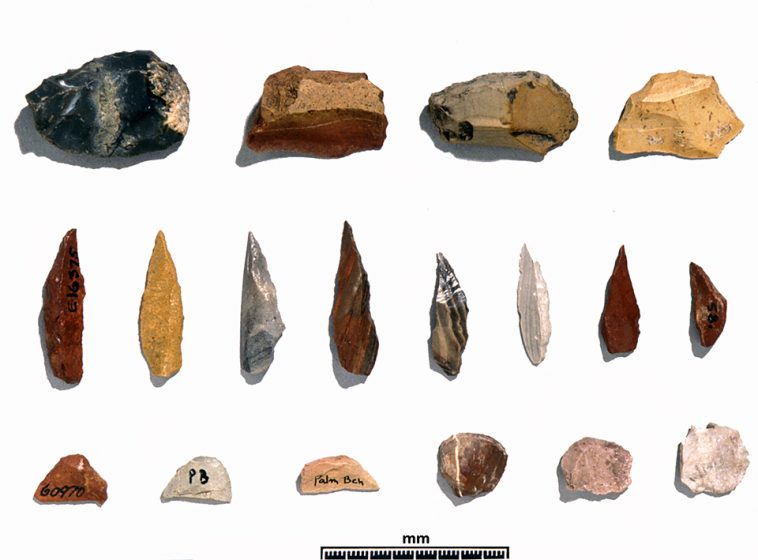 stone-arfeacts-australian-museum