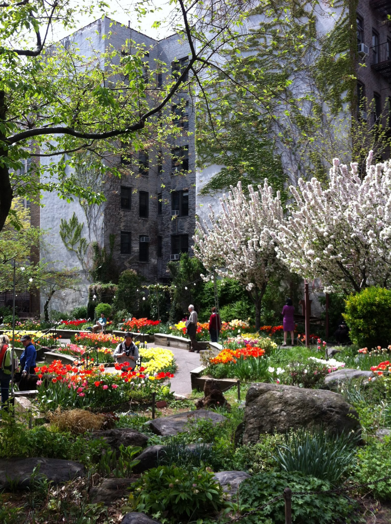 A public garden between apartment buildings in New York City. Photo: David Maddox