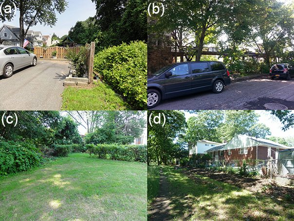 Lawn Ornaments Or Automotive Outsider >> The Nature Of Cities An Idea Hive Of Green City Building Page 10