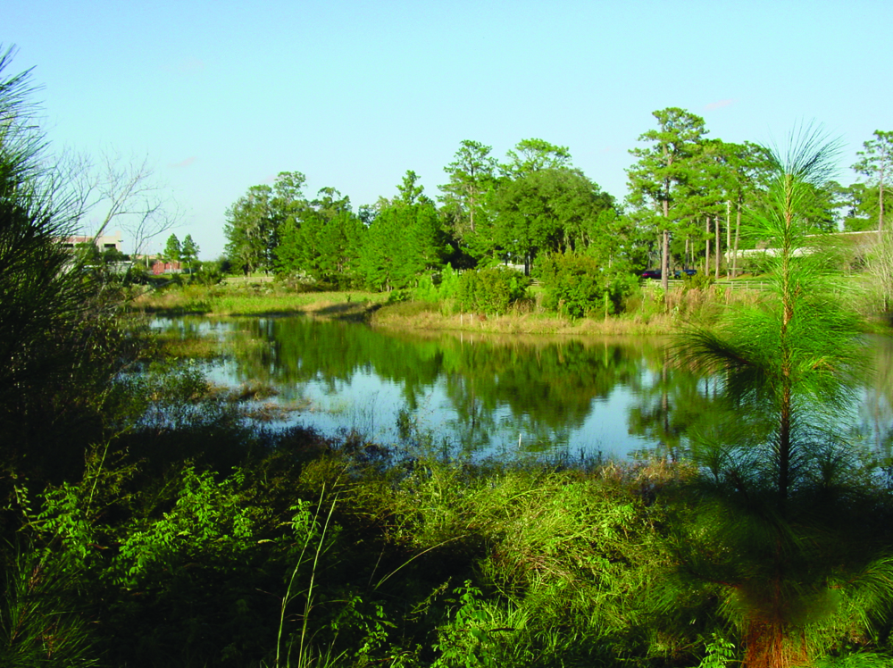 Lessons learned what does it take to create a more for Stormwater pond design
