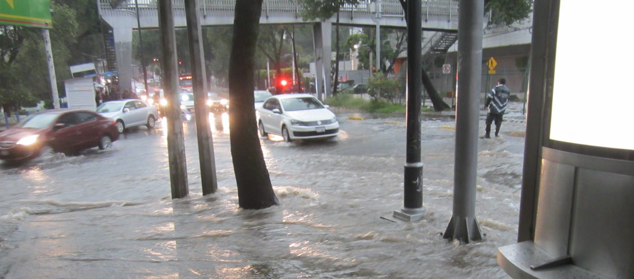 ecological issues in mexico city essay Critical issues in transportation 3 t he united states depends on transpor-tation to compete globally and to help revive a sluggish domestic economy.