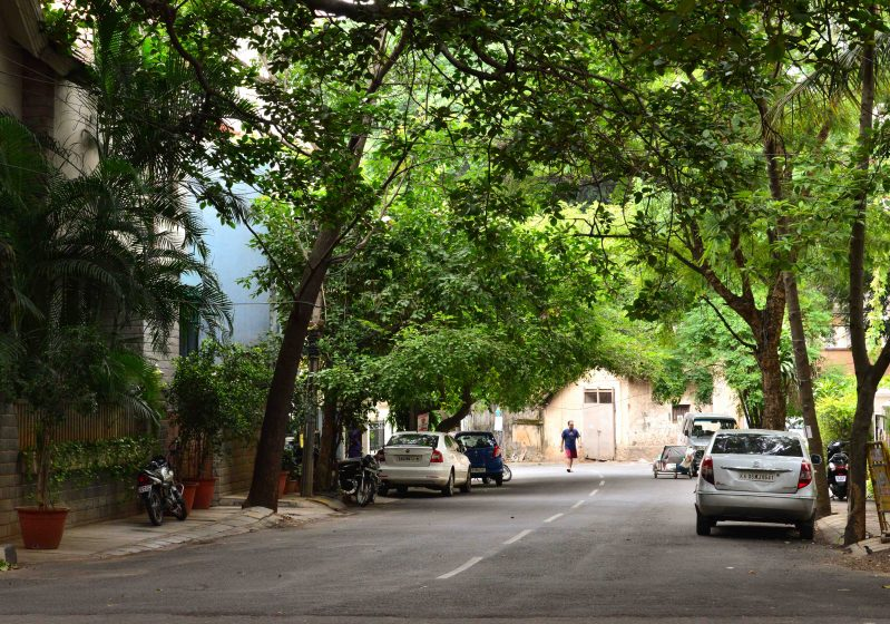 A resident takes a morning walk on a wooded street. Photo credit: Suri Venkatachalam