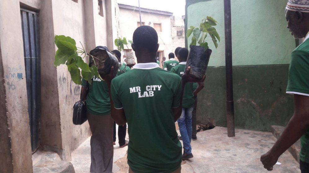 d997ef3364a In the nooks and crannies of Kano city Mr City Lab takes trees to their  right places. Here the millennials visit Rimin Kira to drop silk cotton  tree.