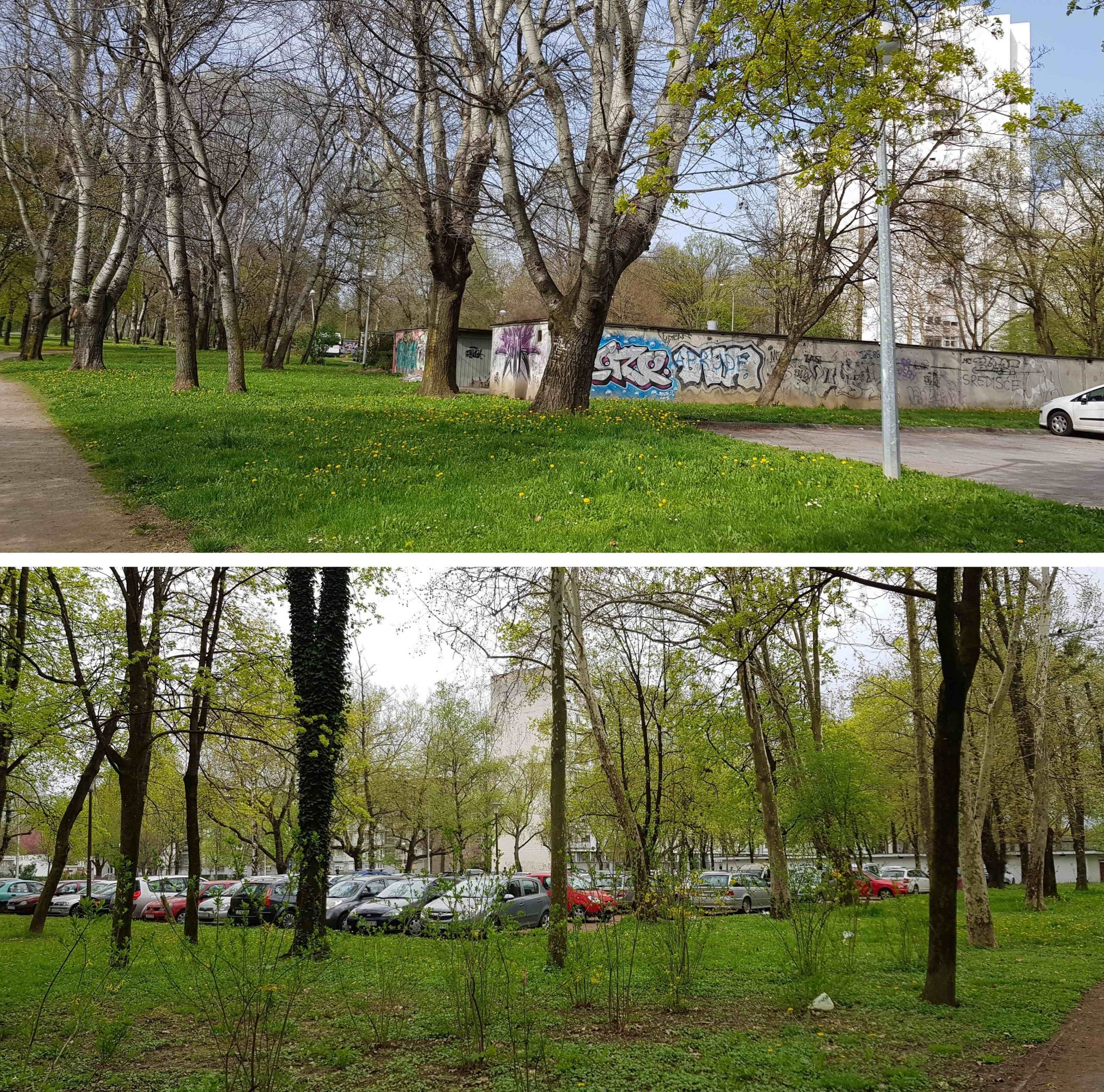 The Nature Of Cities An Idea Hive Green City Building Edible Plant Cell Project On Diagram 3d Poster Examples Garages And Parking Lots Intrusion In Vjekoslav Majer Park Above Newlyweds Below Photos Taken 11 04 2018