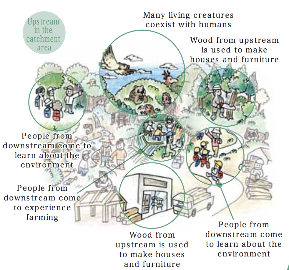 The Nature of Cities | An idea hive of green city building | Page 3