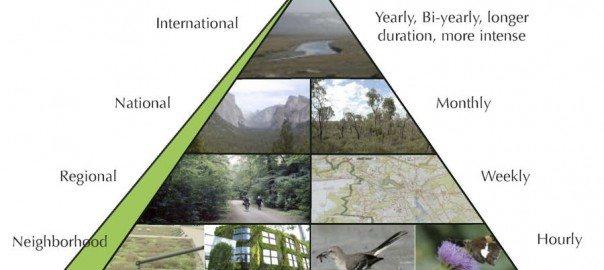The Nature Pyramid