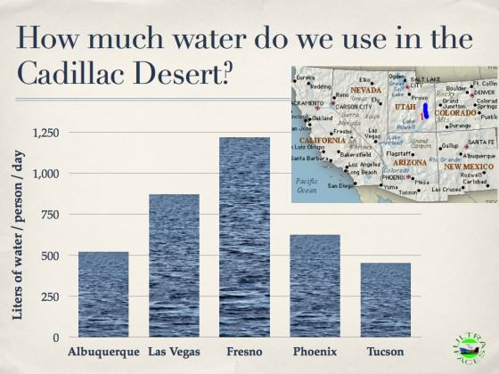 Urban Water Use in the Cadillac Desert