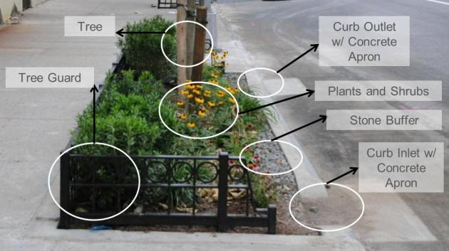 Diagram of Street Tree Bioswale.