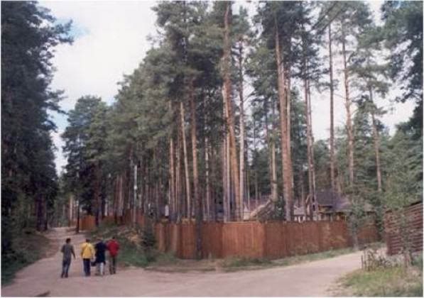 New Russian suburbia in pine forest in the outskirts of St. Petersburg