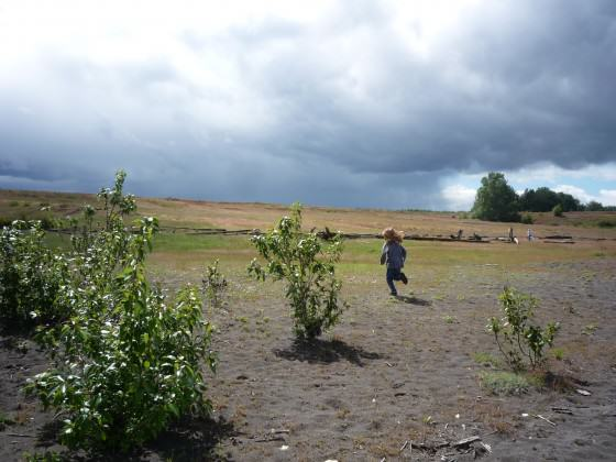 Kids exploring West Hayden Island Grasslands. Photo: Bob Sallinger