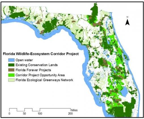 Florida Wildlife Corridor Initiative