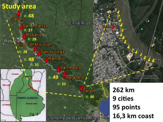 Fig. 3 Analyzed cities using the urban-exurban gradient bird sampling method along the riparian coast.