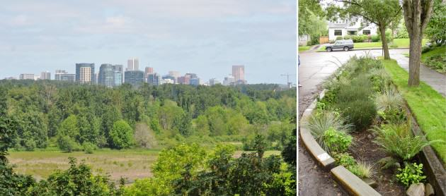 LEFT: Urban natural areas such as 160-acre Oaks Bottom Wildlife Refuge in downtown Portland provide multiple ecosystem services including maintaining biodiversity (more than 100 species of birds have been recorded at Oaks  Bottom) in the heart of the city, multiple passive recreational opportunities, waster quality benefits, floodplain storage, and environmental education. RIGHT: At the other range of the size spectrum built green infrastructure like this curb extension not only protects the city's $1.44  billion investment in its Combine Sewer Overflow program by keeping stormwater out of the city's grey, piped system but also create a more aesthetic green street and contributes to traffic calming, improving quality of life in the neighborhood.