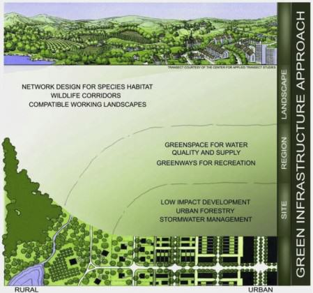 Green Infrastructure design across an urban-rural-wildlands continuum.