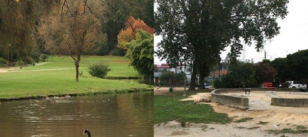 Figure 2. Different intervention types (landscape management to the left and landscape design to the right) at the Los Patos and Mendez lagoons, Concepción. Photos: Paula Villagra