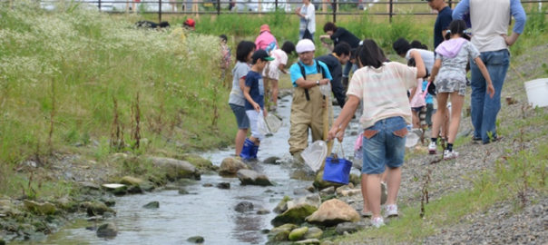 Univ. Students, primary school children and local people have collaborative work for the survey and environmental management. This is also including process planning, 2013. Photo: Keitaro ITO